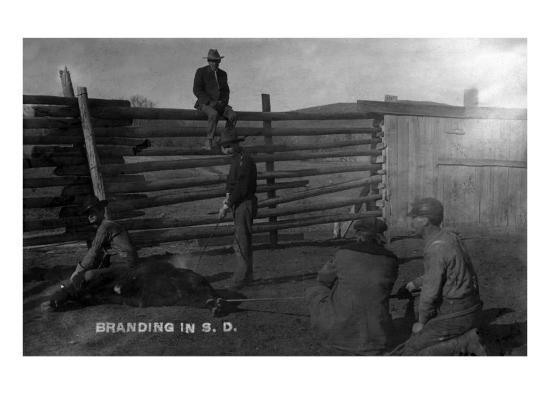 South Dakota - Branding Cattle Scene-Lantern Press-Art Print