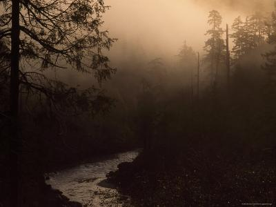 South Fork of Smith River at Sunrise, California-Phil Schermeister-Photographic Print