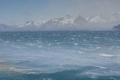 South Georgia. Fortuna Bay. Katabatic Winds-Inger Hogstrom-Photographic Print