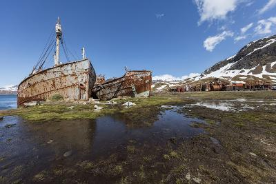 South Georgia Island, Grytviken. Abandoned Whaling Ships and Whaling Station Gather Rust-Jaynes Gallery-Photographic Print