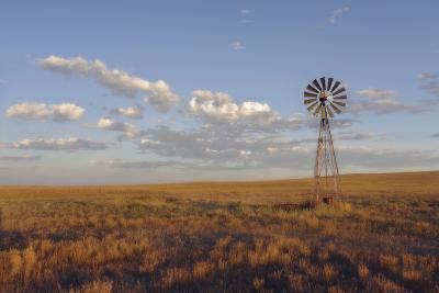 South Leunberger Windmill at Sunset-Amanda Lee Smith-Photographic Print