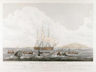 South Sea Whale Fishery, 1825-John Huggins-Giclee Print