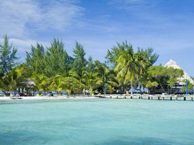 South Water Cayes Marine Reserve, Hopkins, Stann Creek District, Belize-John & Lisa Merrill-Photographic Print