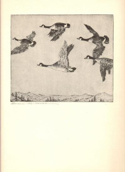 Southbound Geese-Benson B Moore-Lithograph