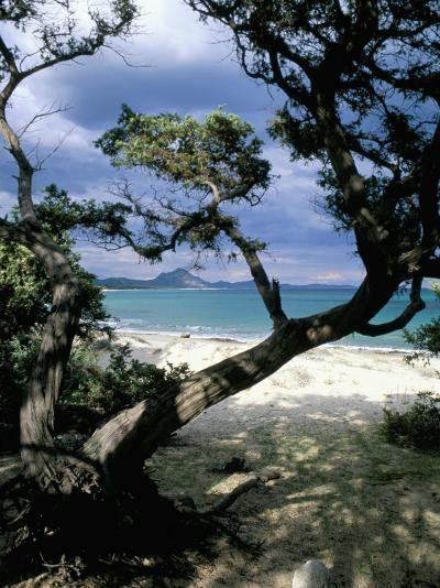 Southeast Coast, Island of Sardinia, Italy, Mediterranean-Oliviero Olivieri-Photographic Print