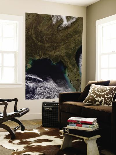 Southeastern United States--Wall Mural