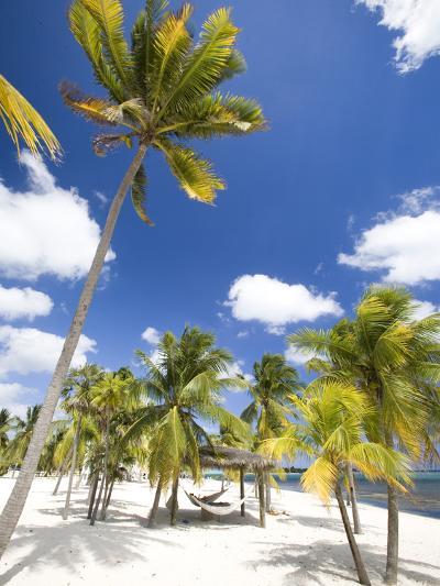 Southern Cross Club, Little Cayman, Cayman Islands, Caribbean-Greg Johnston-Photographic Print