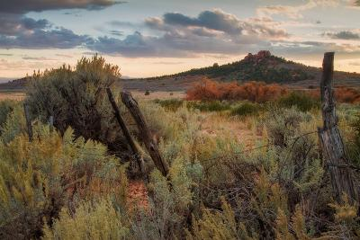 Southern Utah Roadside-Vincent James-Photographic Print