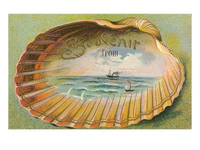 Souvenir from... Clam Shell--Art Print