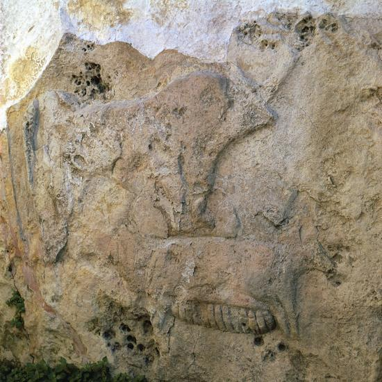 Sow-and-piglets relief from Malta. Artist: Unknown-Unknown-Giclee Print
