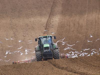 Sowing a Cereal Crop In Mid March-Adrian Bicker-Photographic Print