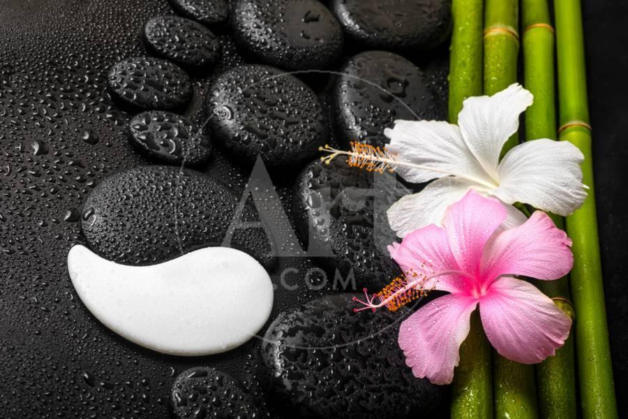 Spa Background Of White Pink Hibiscus Flower Symbol Yin Yang And