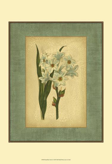 Spa Blue Curtis I-Samuel Curtis-Art Print