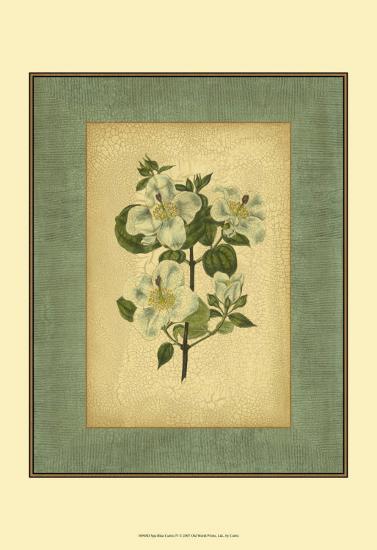 Spa Blue Curtis IV-Samuel Curtis-Art Print