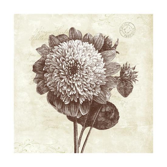 Spa Botanical II-Katie Pertiet-Art Print