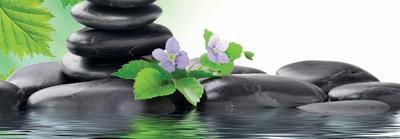 Spa Concept with Zen Stones and Flower--Art Print