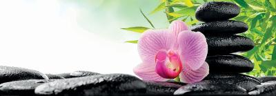 Spa Concept with Zen Stones and Orchid--Art Print