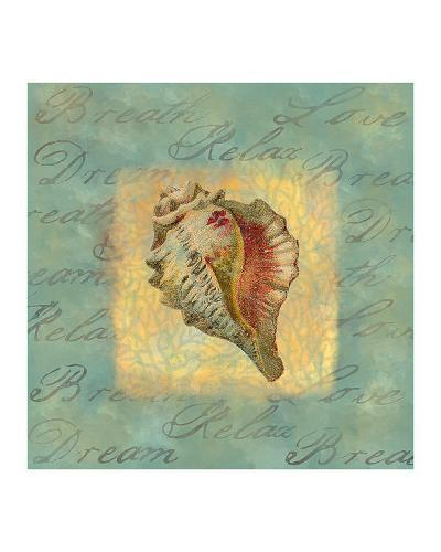 Spa Sea Shell III--Giclee Print