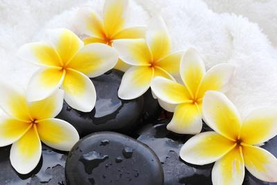 https://imgc.artprintimages.com/img/print/spa-still-life-with-frangipani-flowers-white-towel-and-zen-stone_u-l-q104y4f0.jpg?p=0