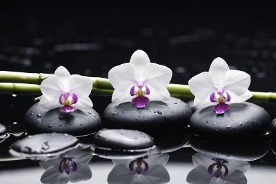 Spa Still Life with Three Orchid and Zen Stones with Bamboo Grove Reflection-crystalfoto-Photographic Print