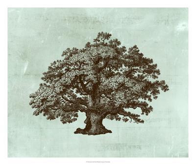 Spa Tree III-Vision Studio-Giclee Print