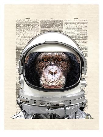 https://imgc.artprintimages.com/img/print/space-chimp_u-l-f8c73e0.jpg?p=0