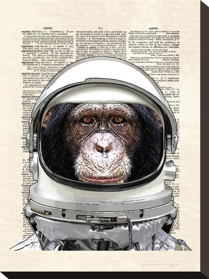 Space Chimp-Matt Dinniman-Stretched Canvas Print