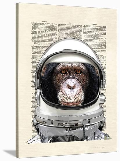 Space Chimp-Matt Dinniman-Stretched Canvas Print