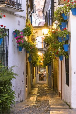 https://imgc.artprintimages.com/img/print/spain-andalusia-cordoba-calleja-de-las-flores-street-of-the-flowers-in-the-old-town-at-dusk_u-l-pxteda0.jpg?p=0