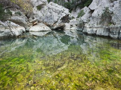 Spain, Majorca, Serra De Tramuntana, Sat. Calobra, Torrent De Par Ice, Water Water Basin, Algae-Rainer Mirau-Photographic Print