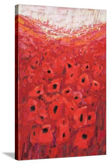 Spanish Poppies II--Stretched Canvas Print