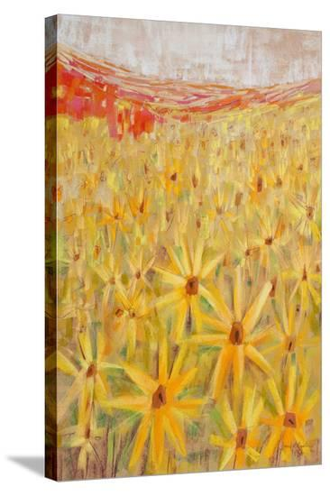 Spanish Sunflowers IV--Stretched Canvas Print