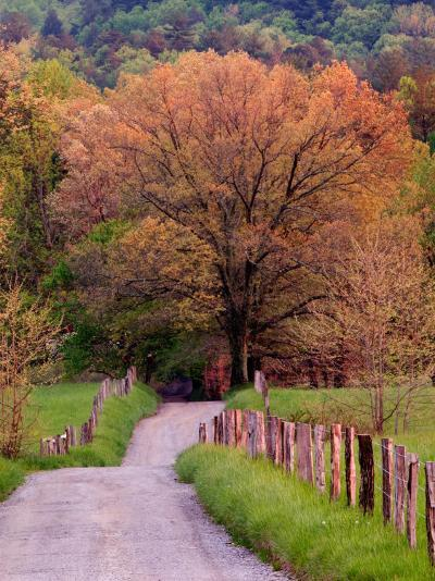 Sparks Lane, Cades Cove, Great Smoky Mountains National Park, Tennessee, USA-Adam Jones-Photographic Print