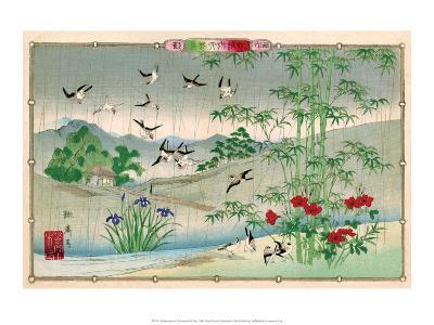Sparrows and Bamboo in the Rain-Rinsai Utsushi-Art Print
