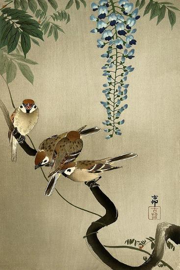 Sparrows and Wisteria-Koson Ohara-Giclee Print