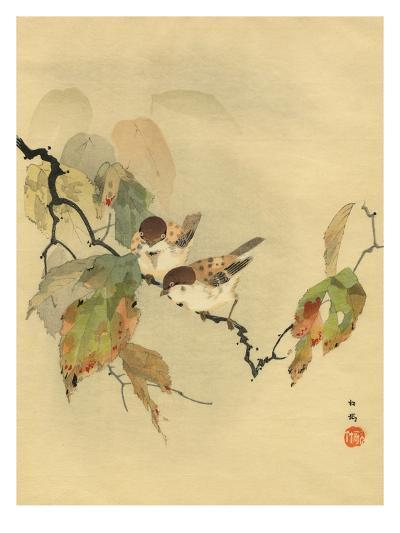 Sparrows with autumn leaves--Giclee Print