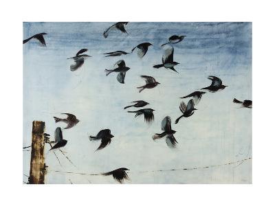 Sparrows-Kari Taylor-Giclee Print