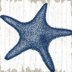 Seaside Starfish by Sparx Studio