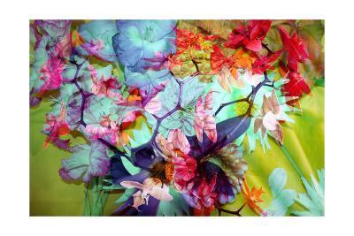 Spectacular Orchid Multicolor-Alaya Gadeh-Art Print