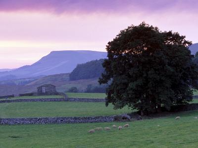 Spectacular Sunset Near Hardraw in Wensleydale, Yorkshire Dales National Park, Yorkshire, England-Patrick Dieudonne-Photographic Print