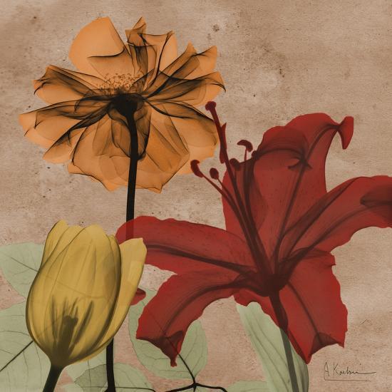 Spice Avalon IX-Albert Koetsier-Art Print