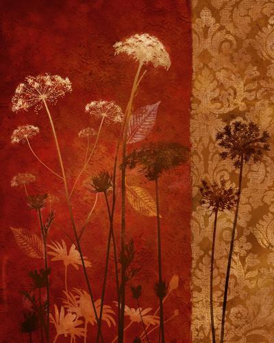 Spice Nature II-Conrad Knutsen-Art Print