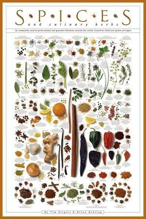 https://imgc.artprintimages.com/img/print/spices-and-culinary-herbs_u-l-f5mh200.jpg?p=0
