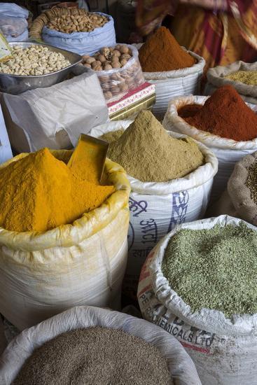 Spices, Jaipur, Rajasthan, India, Asia-Doug Pearson-Photographic Print