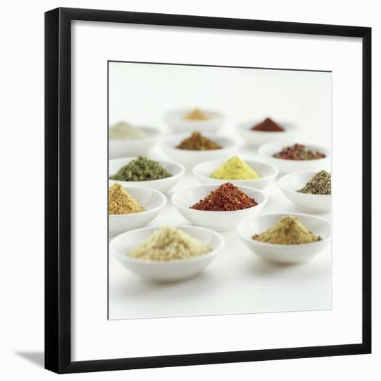 Spices, Spice Mixtures and Marinades in Small Bowls-Jana Liebenstein-Framed Photographic Print