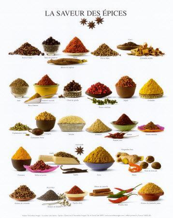 Spices--Art Print