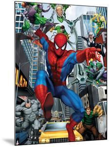 Spider-Man, Doctor Octopus, Green Goblin, Vulture, Black Cat, Electro, Lizard, Rhino and Sandman