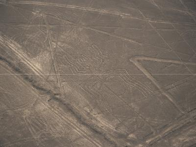 Spider, Nazca (Nasca) Lines, Unesco World Heritage Site, Peru, South America-Jane Sweeney-Photographic Print