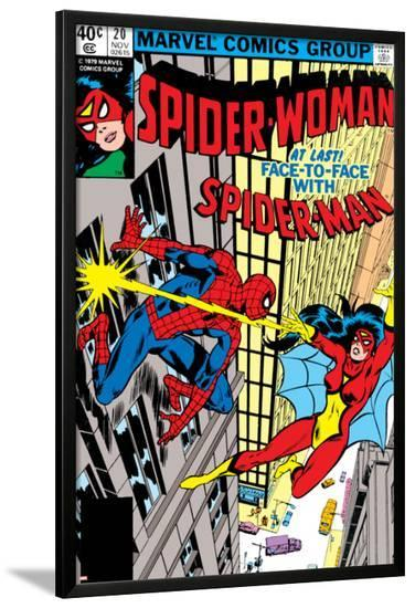 Spider-Woman No.20 Cover: Spider Woman and Spider-Man Fighting-Frank Springer-Lamina Framed Poster