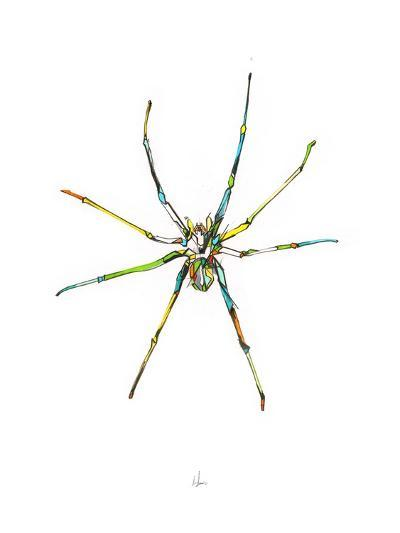 Spider-Alexis Marcou-Art Print